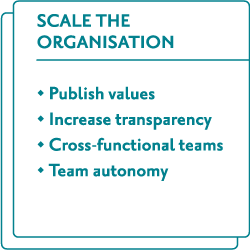 Scale the organisation